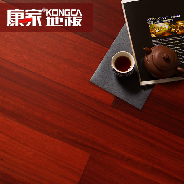 904圓盤豆(柚木色)2